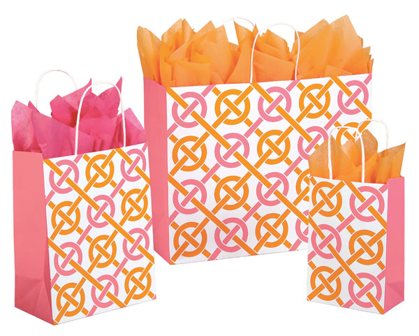Chic Link Paper Shopping Bags