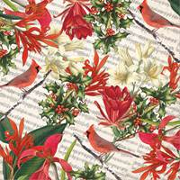 Cardinal & Holly Gift Wrap Paper Wholesale gift wrap paper, Jillson & Roberts gift wrap, Christmas gift wrap, Winter gift wrap, Holiday gift wrap, Hanukkah gift wrap