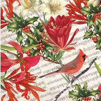 Cardinal & Holly Tissue Paper