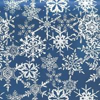 Midnight Snowflake Tissue Paper