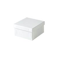 White Jewelry Box [clone] White Gloss jewelry boxes, White jewelry boxes, Cotton filled jewelry boxes