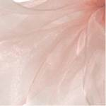 Simply Sheer Light Pink