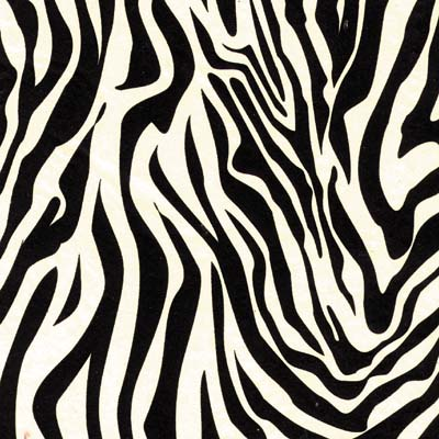 Animal Print Tissue Paper - Made in USA