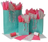 Aqua Gloss Paper Shopping Bags (Cub)