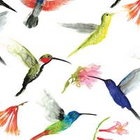 Hummingbirds Tissue Paper