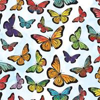 Monarch Butterfly Tissue Paper