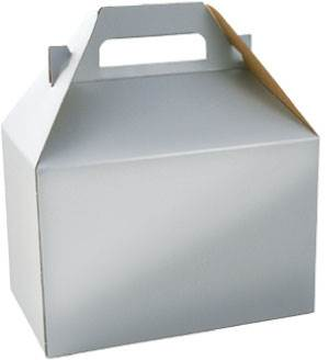Platinum Silver Gable Box