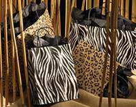 Zebra and Leopard Collection